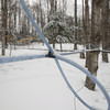 Record-Eagle/Keith King<br /> Lines and taps are utilized with sugar maple trees at Out of the Woods Farm in Milton Township.