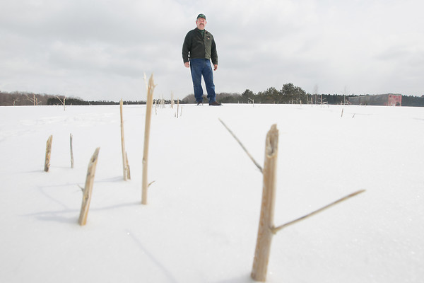 Record-Eagle/Keith King<br /> Harry Norconk, of Platte Township, stands in his asparagus field at Norconk Farm.