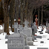 Record-Eagle/Jan-Michael Stump<br /> Rows of gravestones sit in the Old Catholic Cemetery, inside Oakwood Cemetery.