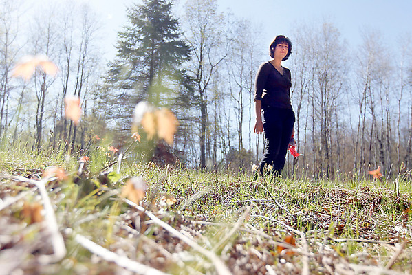 Record-Eagle/Jan-Michael Stump<br /> Ashley Flees began mushroom hunting about a year and a half ago in the woods near her Fife Lake home.