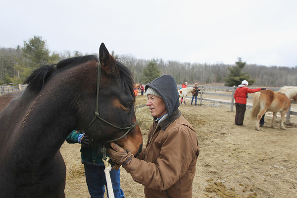 Record-Eagle/Keith King<br /> Erwin Sporte, 90, of Elmwood Township, grooms a horse as part of the Hug and Groom program as he volunteers at the Professional Equine Assisted Counseling and Education (PEACE) Ranch in Blair Township.