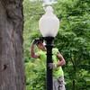 LAMP POST PAINTER