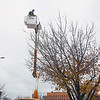 Record-Eagle/Keith King<br /> Robert Hipp, with Traverse City Light & Power, puts lights up on a tree along Front Street Tuesday, November 13, 2012 in downtown Traverse City. The lights are planned to be put up downtown in November so that they're ready to be illuminated at the beginning of December.