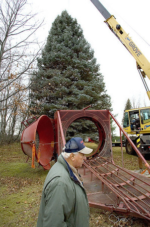 Record-Eagle/Keith King<br /> Fred Pyse, of Mesquite, Texas, works on the steps necessary to get a large Blue Spruce through a Christmas tree baler Friday, November 12, 2010 in Williamsburg. The tree, between 55 and 60 feet tall and planted in 1955, will be used as a Christmas tree at Sundance Square in Fort Worth, Texas.