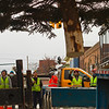 DOWNTOWN TREE ARRIVES