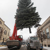 Record-Eagle/Keith King<br /> A blue spruce is raised by Al Papcun, with Team Elmer's, Tuesday, November 26, 2013 prior to the tree being placed as Traverse City's downtown Christmas tree in Cass Street at Front Street.