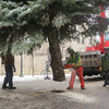 Record-Eagle/Keith King<br /> Matt Derengowski, with the City of Traverse City parks department, saws a section off a blue spruce as Adam Cole, right, also with the parks department, walks near Tuesday, November 26, 2013 prior to the tree being lowered into a manhole as Traverse City's downtown Christmas tree in Cass Street at Front Street.