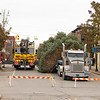DOWNTOWN TREE ARRIVAL