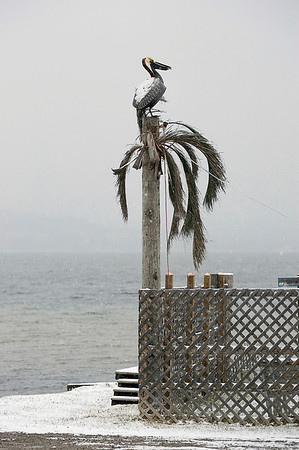 Record-Eagle/Keith King<br /> Snow falls on an artificial pelican and palm tree Wednesday near Lakeside Coney Island at Perrins Landing on Lake Leelanau.