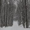 KALKASKA SNOWY ROAD