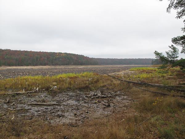 Record-Eagle/Glenn Puit<br /> The former site of Brown Bridge Pond.