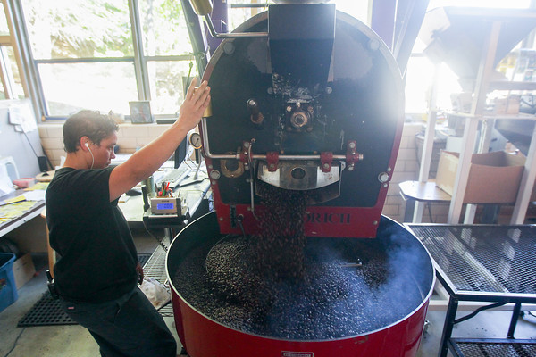 Record-Eagle/Keith King<br /> Karin Thompson, roaster manager, moves a lever to transfer coffee beans from a roasting drum to a cooling rack Monday, October 14, 2013 at Higher Grounds Trading Company in Traverse City.
