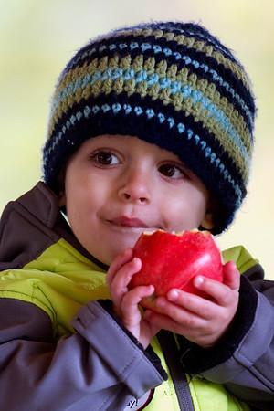 Spec Apple Harvest Day