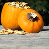Record-Eagle/Nathan Payne<br /> Pumpkin seeds can be a tasty seasonal snack, but there are some chefs who've taken the crunchy bits to a new level.