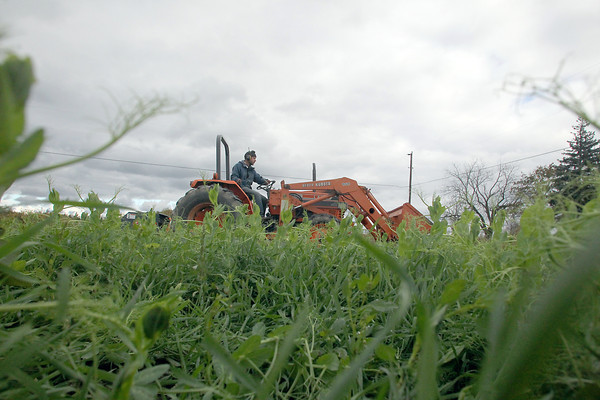 FARM RESIDENCY PROGRAM