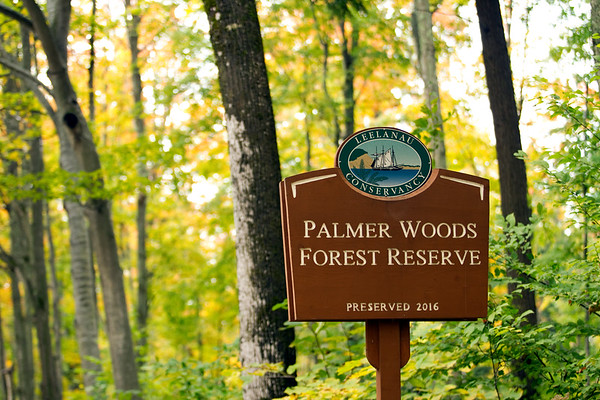 PALMER WOODS TRAILS