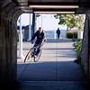 Spec Bike