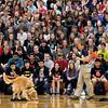 SCHOOL SAFETY DOG