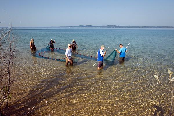 FISH SAMPLING