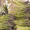 Record-Eagle/Jan-Michael Stump<br /> Asparagus production in Michigan is up almost 30 percent this year.