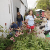 "Record-Eagle/Keith King<br /> Heather Simpson, from left, co-coach with the Traverse City St. Francis volleyball program, as well as Katie Clulo, Rosie Wilson and Nicole Ehardt, players in the Traverse City St. Francis volleyball program, volunteer as they cut and gather dead flowers and plants at Reining Liberty Ranch Thursday, September 12, 2013 during the United Way of Northwest Michigan Day of Caring. ""I think this is really going to be a special place to go for peace,"" Becki Bigelow, executive director of Reining Liberty Ranch, said."