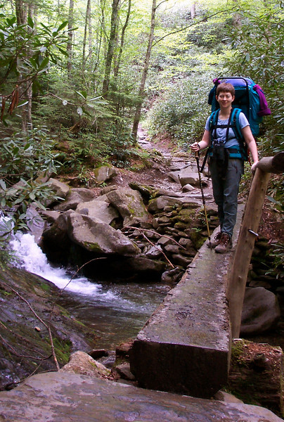 Having gotten reservations at the Mt. LeConte Lodge in the Great Smoky Mountains over Memorial Day weekend, we choose the spectacular Alum Cave Bluff trail as our route.