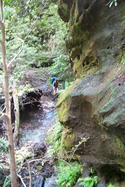 Our trail took us down a slippery gully.  Jeane went first, so as to catch Patti looking undignified.
