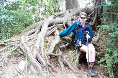 Patti admires this massive root system.
