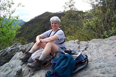 Jeane's enjoying the warm rocks of the heath bald.