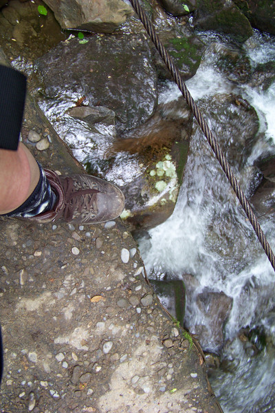 The trail crossed many narrow bridges; some high over a rushing creek. It was a little disconcerting to Patti to see the water moving so quickly under her feet as she was focusing on keeping them on the bridge.