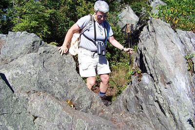 Jeane thinks this is more like New England hiking than Smoky Mountain hiking.