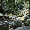 Indian Camp Creek is a nice place to enjoy lunch on the Maddron Bald Trail.  It's always cool and pleasant on a hot day.
