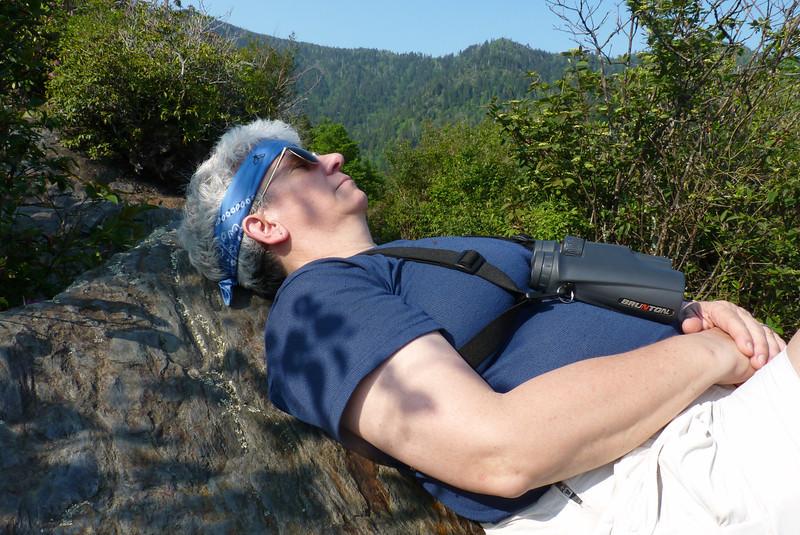 Jeane power naps on the heath bald.