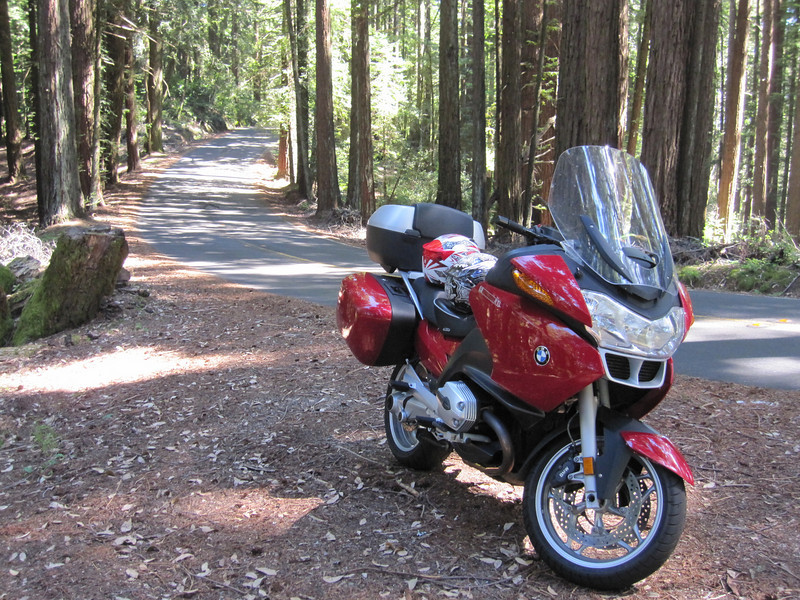 Nice spot for a rest.  Somewhere in Muir Woods.
