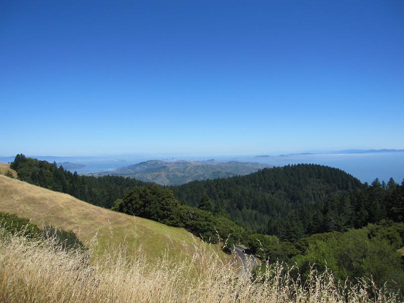 Along E. Ridgecrest Blvd on Mount Tamalpais.  Can see SF in the far far distance.