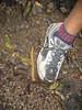 Bannana Slug!!