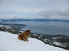 Mingie gets in his Zen position at the top of peaks.
