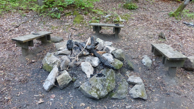Campfire Ring at Fern Cove Campsite