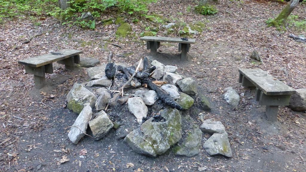 Campfire Ring at Fern Cove Campsite