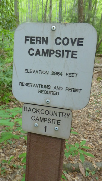 Fern Cove Campsite Sign