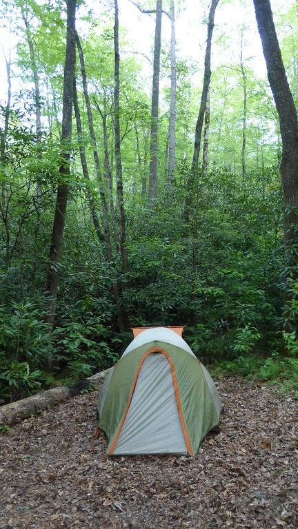 Tent at Fern Cove Campsite