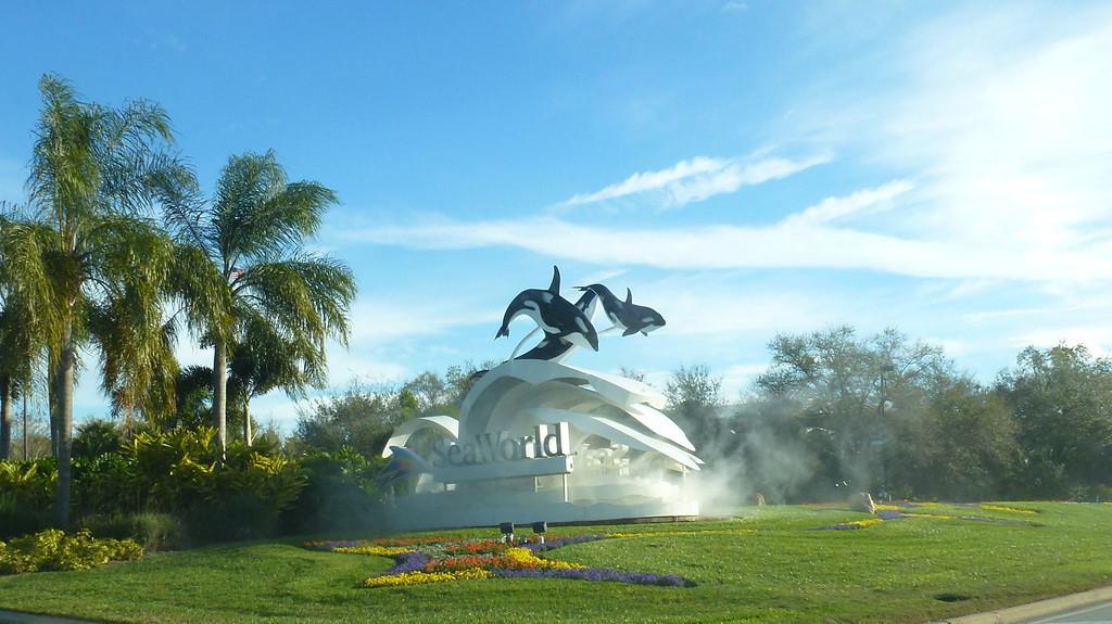 SeaWorld (Orlando, Fl)