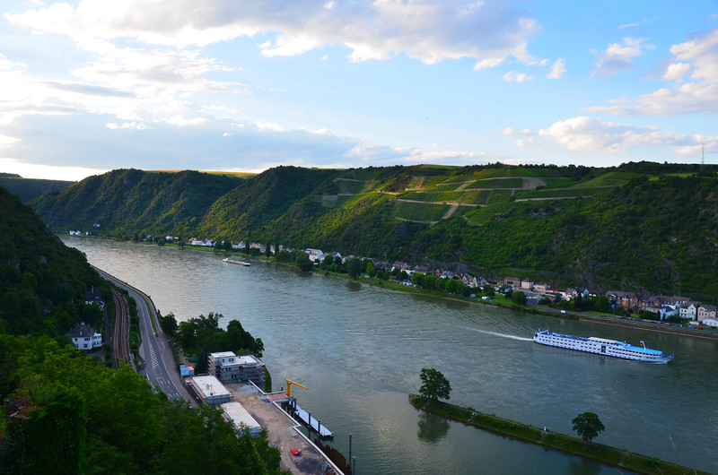 Vineyards and Castles Along The Rhein River