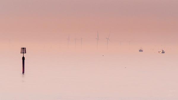Dawn fishing amongst the turbines