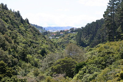 Karori, Foxton, Kaitoke and Wellington