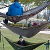 hammock-7676