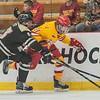 hockey-5377