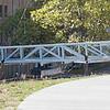 swan_bridge-0966
