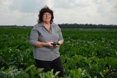 rop-Farmworkers Bill-Torrey Farms-Maureen Torrey-ak