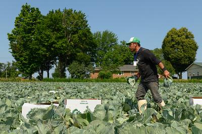 rop-Farmworkers Bill-Amos Zittel-Fransisco Antonio Rivera-ak